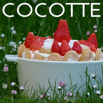 cocotte, une sélection de cocottes en porcelaine de différentes tailles par assiettes et compagnie