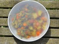 legumes de printemps avec épices bipia arosteguy thiercelin