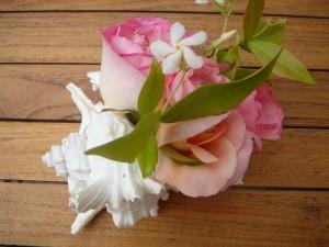 un bouquet coquillage pour faire de petits centres de table et mettre en lumières vos tables de fetes sur assiettes et gourmandises