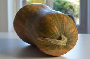 courge-butternut-assiette-et-gourmandises