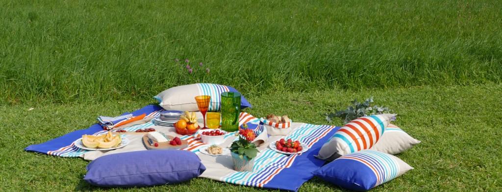 l'art de reussir son pique-nique avec les trucs et astuces d'assiettes et gourmandises et des recettes gourmandes et la check list des choses à ne pas oublier