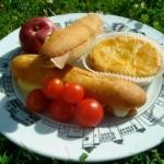 picnic-bio-2