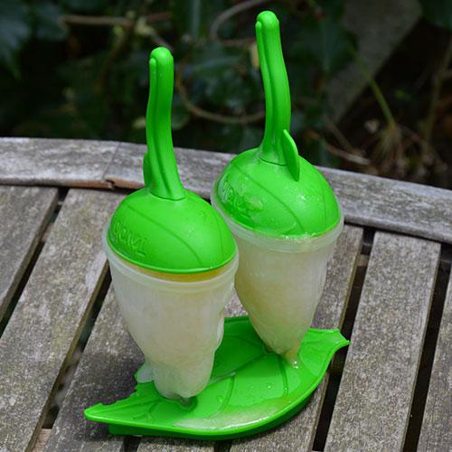 moules à glace originaux avec une feuille pour socle et des insectes pour façonner des glaces, une création tovolo lavables au lave vaisselle donc archi pratique et qui va enchanter les glaces d'été des vos enfants