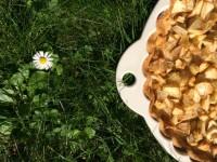 tarte aux pommes plat revol les naturels