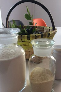 tarte aux myrtilles de combo, les myrtilles bio du pays basque, une recette d'assiettes et gourmandises dans des nouveaux plats de porcelaine revol