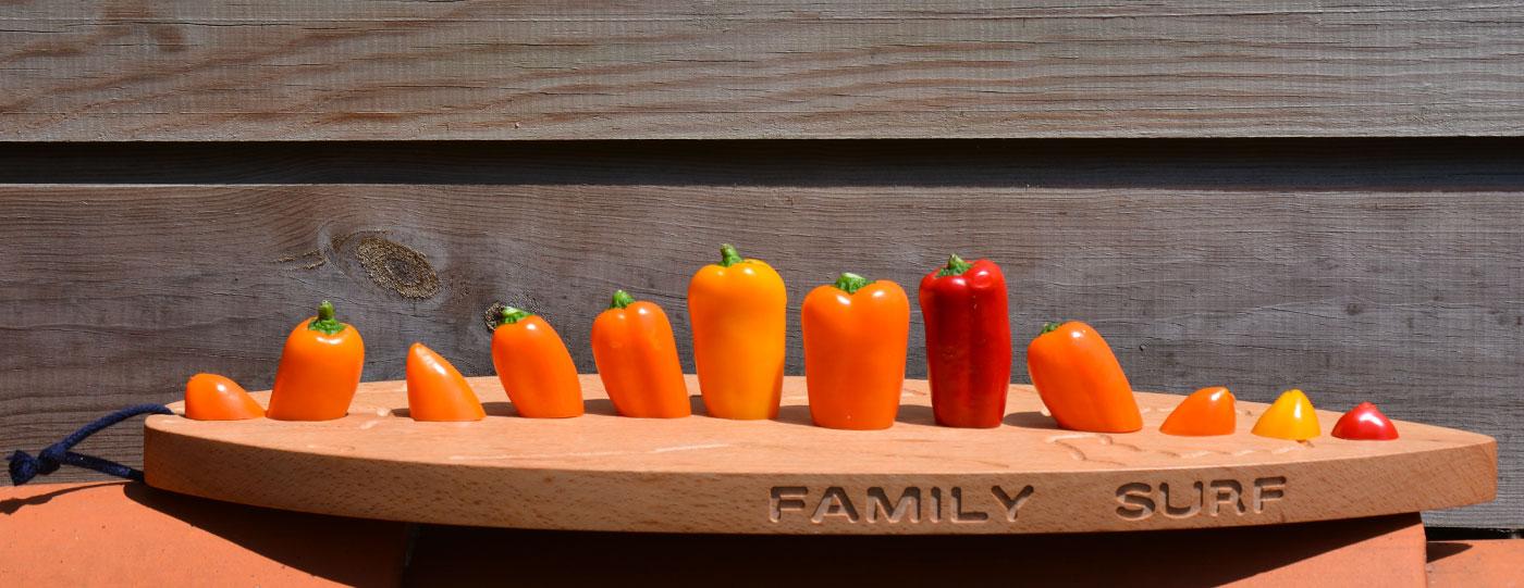 la planche familles surf pour découper ses petits légumes, une création de béatrice Pene pour Assiettes et compagnie, made in france à Bayonne au Pays Basque