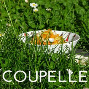 tous nos modèles de coupelles en porcelaine sont fabriqués par la maison Revol - design par béatrice Lassus Pene pour Assiettes et compagnie